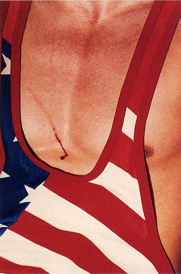 AMERICAN FLAG WITH SCRATCH | PHOTOGRAPHY COLLIER SCHORR | 1999/2000